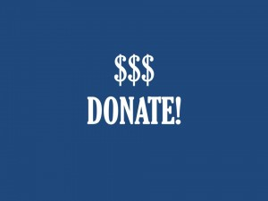 donate blue button